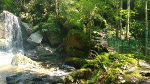 Liebenfels – Abenteuer Wasser Weg